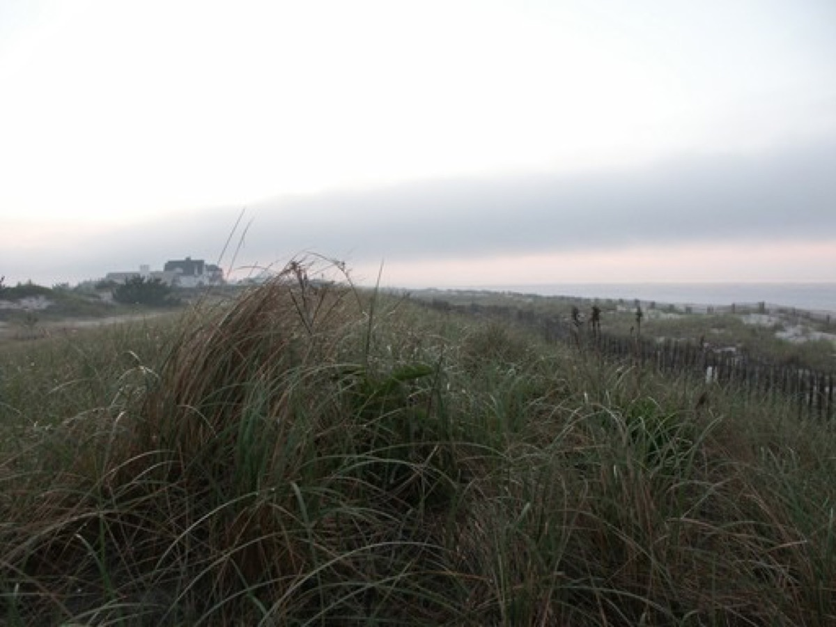 A photograph taken in Quogue, NY, for Quogue web design services