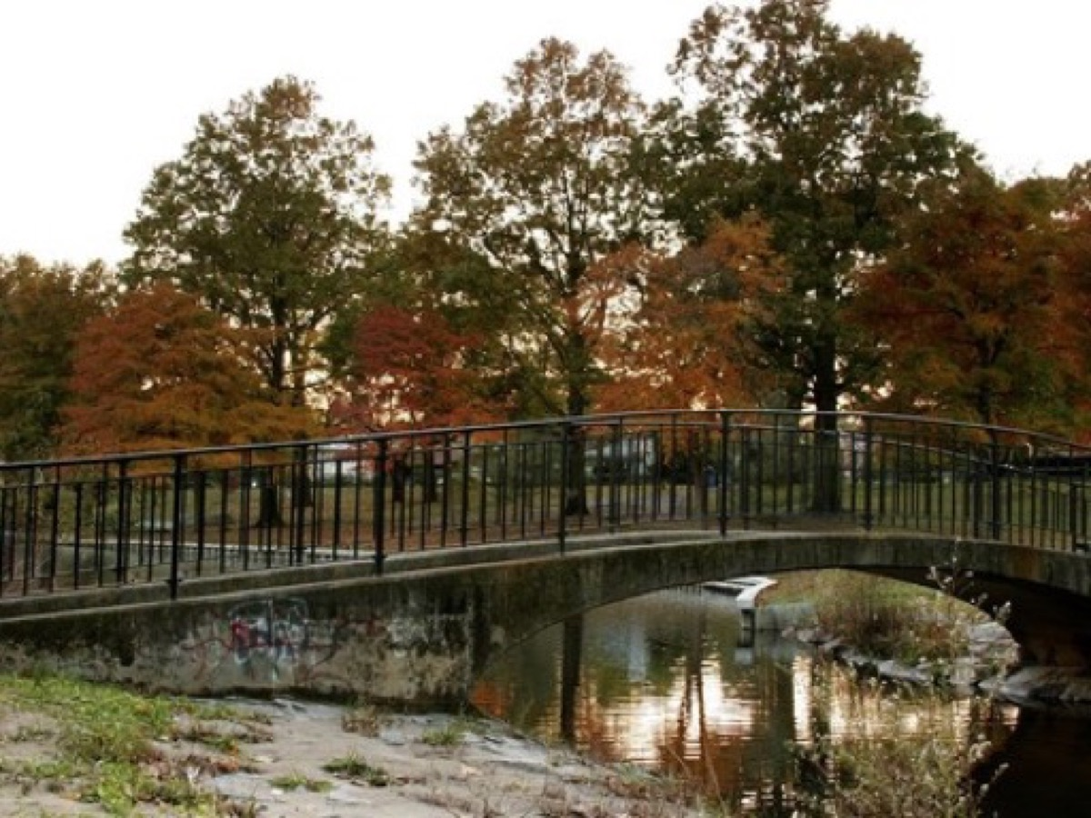 A photograph taken in Town of Hempstead, NY, for Town of Hempstead web design services
